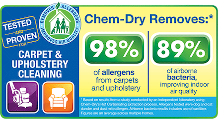 Professional Upholstery Cleaner from Green Leaf Chem-Dry in Mississauga