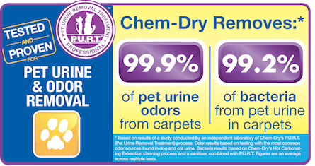 Pet Urine Removal Treatment by Chem-Dry Removes 99.9% of Pet Urine Odor and 99.2% of Pet Urine Bacteria